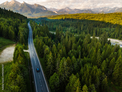 Road Trip Car Drive Trough Forest into Mountains Drone View
