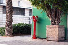 Red Fire Hydrant On The Street For Safety And Fire Prevention. Fireplug, Old Fire Crane For Emergency Fire Access.