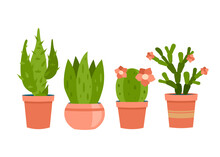 Interior Succulents In Pots. Decorative Green Cacti Of Various Shapes With Flower. Modern Natural Decor Apartment And Home Interiors. Houseplant For Scandinavian Design. Vector Cartoon Illustration