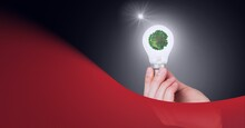 Animation Of Person Holding Light Bulb With Plant