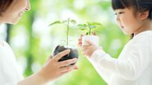 植物を見る親子 環境保護イメージ
