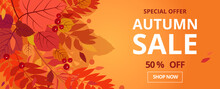 Autumn Sale. Banner For 50% Promotion Autumn Discount. Vector Falling Leaves. For Discount  Booklet Or Web Banner