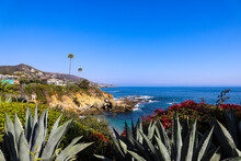A Gorgeous Shot Of The Vast Deep Blue Ocean Water With Waves Rolling Into The Beach, Homes On The Cliffs With Lush Green Palm Trees And Plants With Blue Sky At Treasure Island Beach In Laguna Beach CA