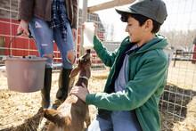 Happy Boy Feeding Kid Goat With Milk Bottle On Sunny Farm