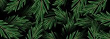 Luxury Nature Green. Floral Pattern Leaf Plant. Vector Illustration Background For Banner.