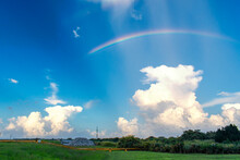 Rainbow Over The Field With Beautiful Green Grass Blue Sky And Puffy White Clouds