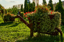 Wagon With Wooden Wheels With Vases Full Flowering Plants. Green Hanging Creeper Plants In Wooden Vases On The Street. Decor Of Parks Carts. Decorative Elements Of Flowers For Streets.