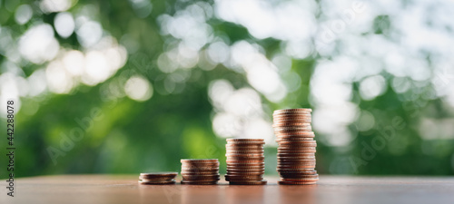 Obraz na plátne Coins put in order on a wooden table virtual, the growth of the concept and business strategy with natural green background