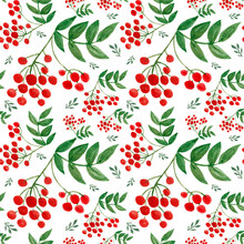 Bright Seamless Autumn Watercolor Pattern With Sprigs Of Viburnum And Green Leaves On A White Background. Bright Red Viburnum Berries And Green Leaves.