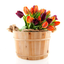 Wooden Sauna Bucket With A Bouquet Colorful Tulips
