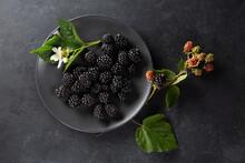 Ripe Berries. Blackberries On Plate On Black Background. Top View