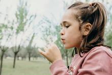Cute Girl Blowing Dandelion In Park