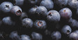 Close up view of ripe blueberries.
