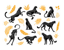 Cheetahs Silhouettes Collection. Vector Illustration Of Stylized Black Cheetahs In Various Actions: Lies, Sitting, Standing, Walking, And Running. Surrounded By Tropical Leaves. Isolated On White