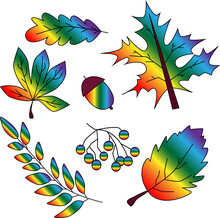 Autumn Set Of Lgbt Flower Leaves