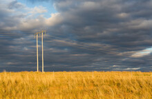 Powerline And Power Pole In A Paddock In Rural New South Wales