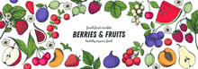 Berries And Fruits Drawing Collection. Hand Drawn Vector Illustration. Food Design Template With Berry And Fruit. Organic Healthy Food.
