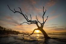 Dramatic Sunrise At Boneyard Beach
