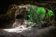 A Shot From Inside The Bat Cave In Cayman Brac Looking Out Into The Dense Vegetation. These Limestone Formations Make Pleasant Tourist Attractions