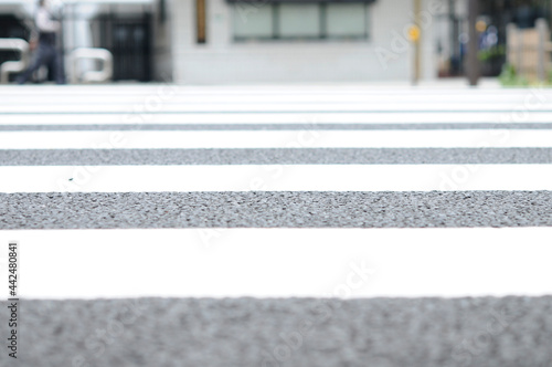 Fotografie, Tablou 横断歩道