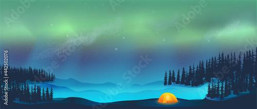 Billede på lærred Camping in tent under Aurora Borealis Northern Lights in Snow