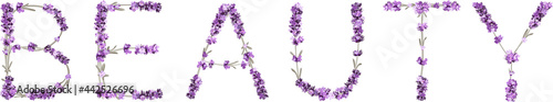 Fotografie, Obraz vector inscription Beauty made in the form of lavender sprigs