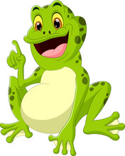 Cute Frog Cartoon On White Background