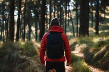 Unrecognizable Traveler Walking In Forest In Highlands
