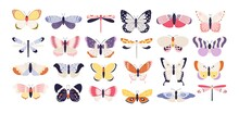 Cute Butterflies. Decorative Spring Butterfly Colorful Wings. Monarch, Moth And Dragonfly. Tropical Beautiful Floral Insect Flat Vector Set