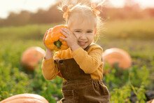A Child Sits On A Large Pumpkin In The Garden At Sunset And Holds A Large Fresh Pepper, Plucked Directly From The Beds. Harvest From Your Vegetable Garden
