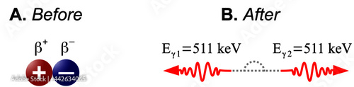 Fotografie, Obraz Electron-positron annihilation is the process in which a positron and an electro