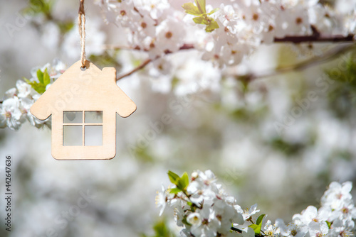 Obraz na plátně Symbol of the house on the branches of a flowering cherry