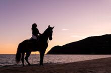 Woman Riding Stallion On Ocean Admiring Sea From Beach At Sunset