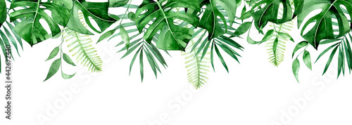 Photo seamless watercolor border, banner, frame with tropical leaves