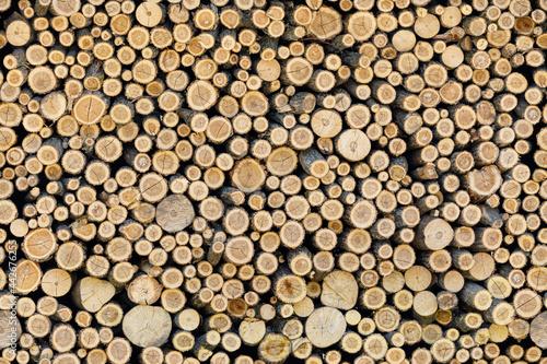 Fotografija Pile of firewood seamless texture or background