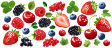 Garden Berries Set Isolated On White Background. Strawberry, Raspberry, Blackberry, Blueberry, Cranberry, Black And Red Currrant.