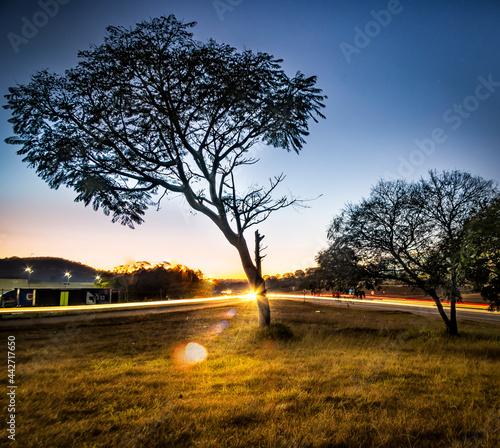 Fotografie, Obraz Nascer do sol rodovia