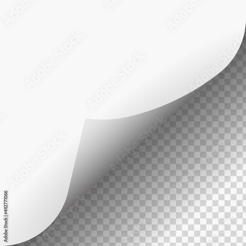 Fotomural page-curl