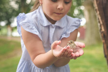 A Girl In The Park Holds A Small Bird In Her Hands. Love To The Animals. Conservation Of The Environment.