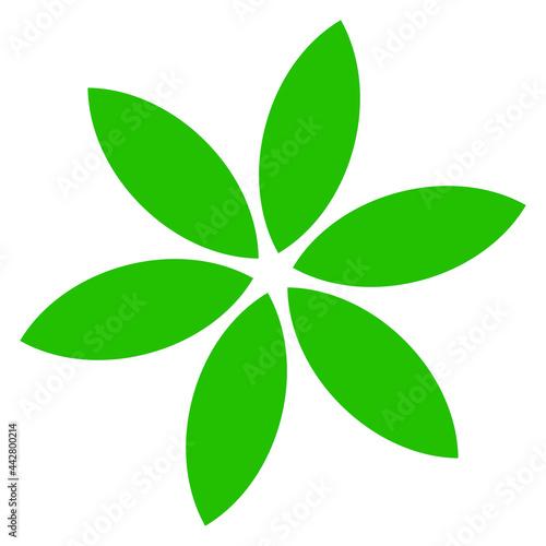 Fototapeta Green leaf, petal shape, greenery foliage icon, symbol, pictogram