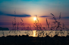 Special Sunrise At Pollença Bay- Bird Flying Over Mediterranean Sea- Orange Sky- Colorful Sky- Calm Water- Meditation Time