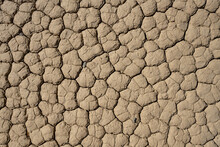Parched Surface Of The Race Track In Death Valley