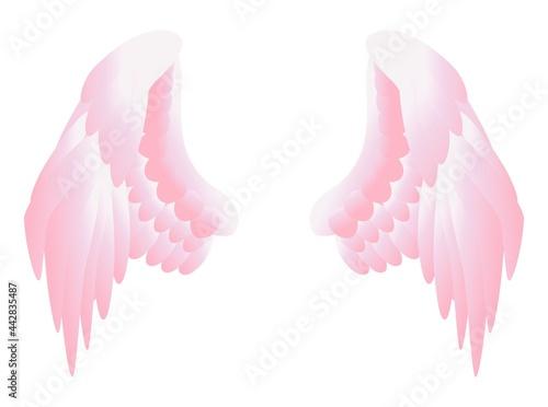 Foto ピンク色の翼のベクターイラスト