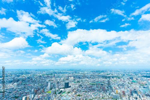 東京風景 夏 地平線に流れる入道雲