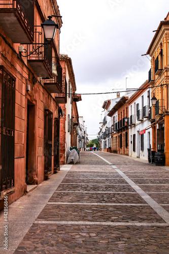 Slika na platnu Old and majestic houses in the streets of Villanueva de los Infantes village