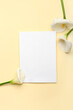 Leinwandbild Motiv Beautiful calla lilies and blank card on color background