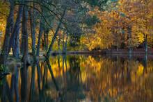 Herbstlicht Am See