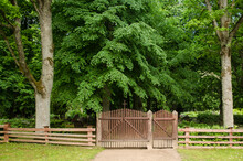 Old Wooden Gates And Fence In Summer Day.