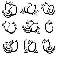 Avocado Set. Collection Icons Avocado. Vector