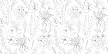Simple Delicate Floral Pattern. Thin Lines. Summer Fabric, Textile And Packaging Design. Medicinal Herbs And Wildflowers. Vintage Herbs. Vector Botanical Illustration